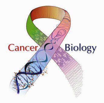La 'otra realidad' del cáncer