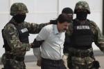 Después de arresto del 'Chapo' siguen capturas colectivas para debilitar a cárteles