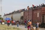 Gobierno mexicano reforzará vigilancia para que migrantes no aborden el tren 'la Bestia'