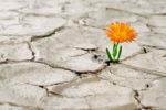 La esperanza le incumbe a toda existencia