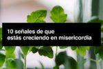 Diez señales de que estás creciendo en misericordia